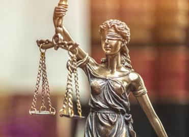 Vertretung vor Gericht und Behörden